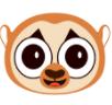 丰猴app