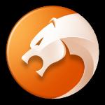 猎豹浏览器手机版 v5.3.3