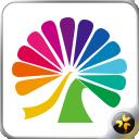 大麦票务电视版 v3.2.0 安卓版