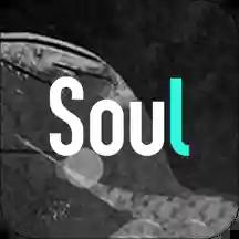 soul免费下载app解锁版