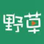 野草社区视频成人app