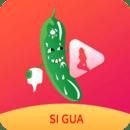 丝瓜成年app视频安卓