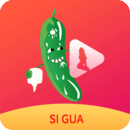 茄子成视频人app