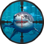 鲨鱼猎人 v1.0 安卓版