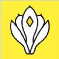 玉兰网app